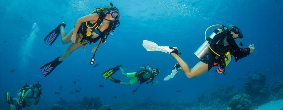 Scuba Dive Travel Trip Palau | Kona Honu Divers