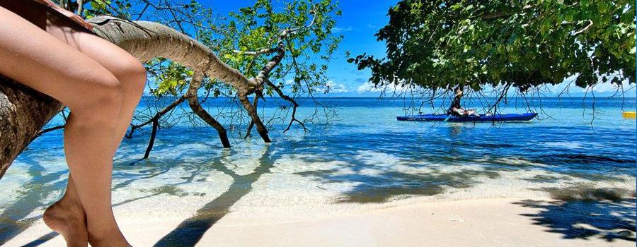 Scuba Dive Travel Trip Palau | Kona Honu Divers 7
