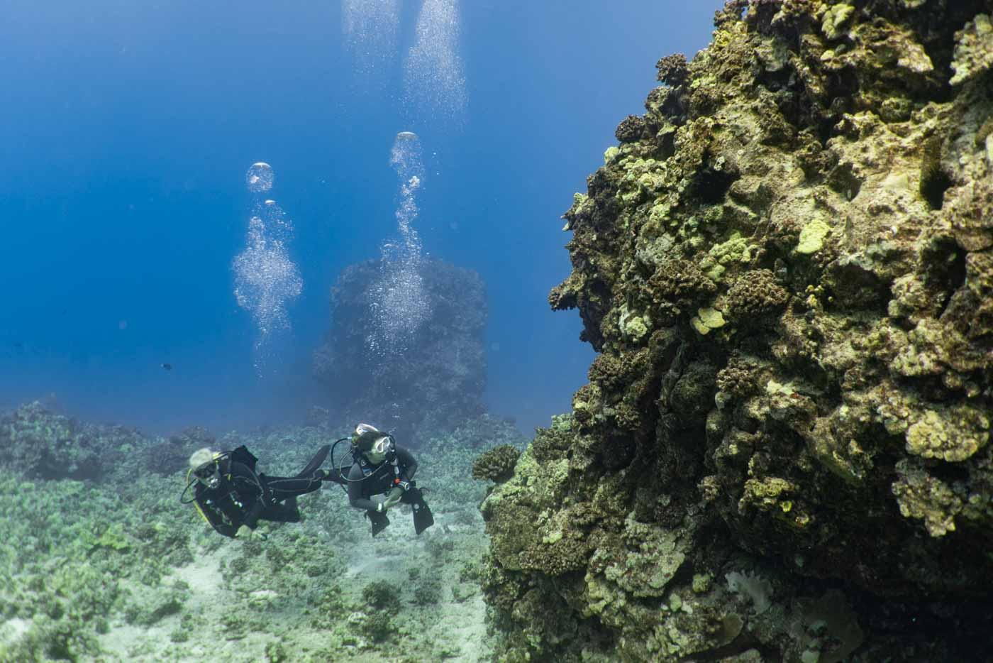 Scuba-Diving-Hawaii-Kona-Honu-Divers-11