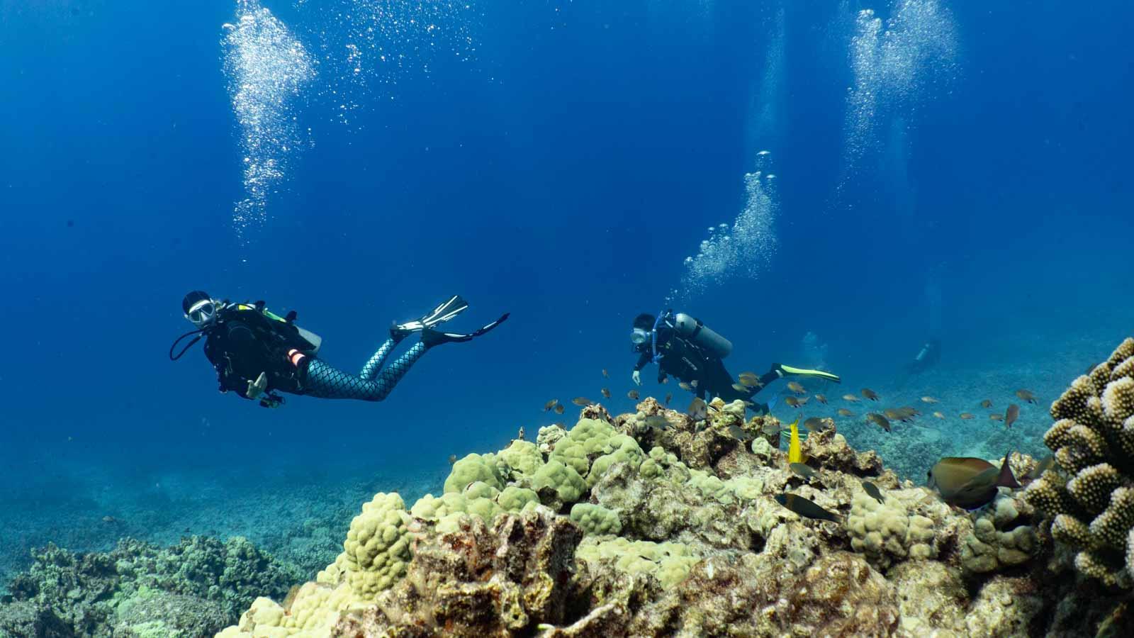 Scuba-Diving-Hawaii-Kona-Honu-Divers-24