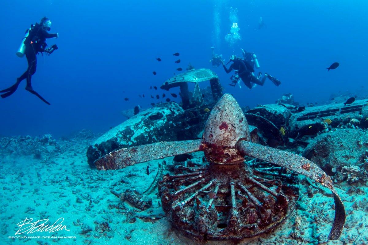 Scuba-Diving-Hawaii-Kona-Honu-Divers-76