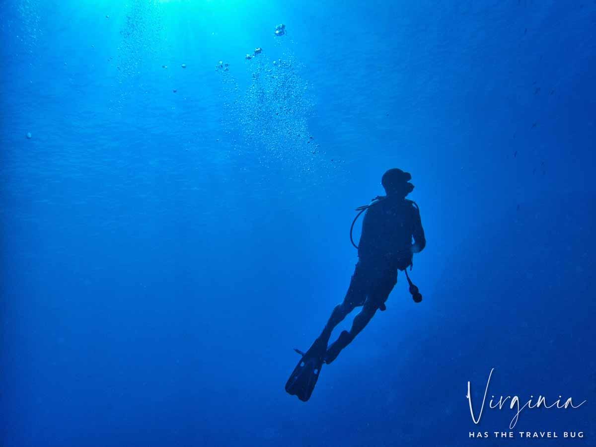 Scuba-Diving-Hawaii-|-Kona-Honu-Divers-95